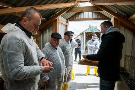 Polacy zainteresowani dobrostanem zwierząt. Ponad 82% mieszkańców terenów wiejskich uważa, że hodowla zwierząt futerkowych w Polsce powinna być dopuszczalna.