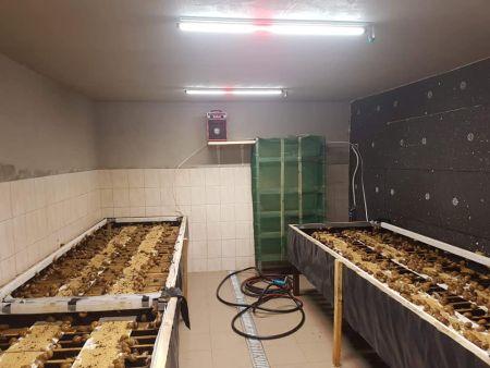 PSH usprawnia hodowlę ślimaków wprowadzając nowatorskie oświetlenie