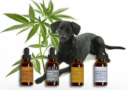Olejki Cannabis Animals w nowej odsłonie