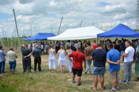 Ponad 70 plantatorów chmielu w Panieńszczyźnie – relacja z wydarzenia