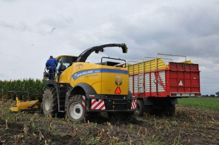 Zbiór kukurydzy sieczkarnią samobieżną FR 550   - Premiera innowacyjnej maszyny New Holland w Strzelcach