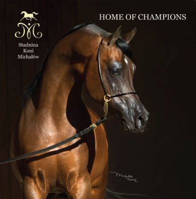 Paryż 2017 i sukcesy polskich koni arabskich