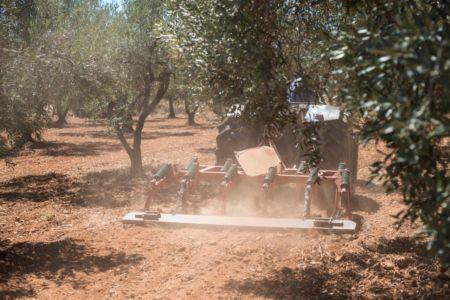 Rok po przejęciu Proplan: Grupa CIECH realizuje strategię globalnego rozwoju biznesu AGRO zwiększając liczbę produktów i rynków na których działa