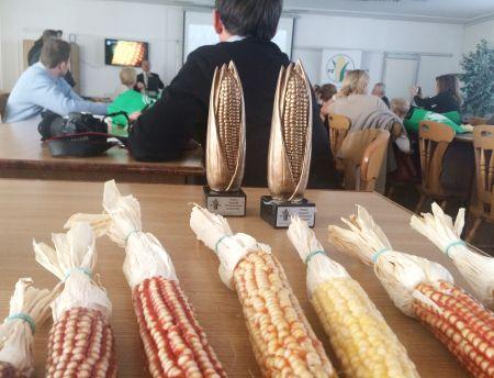 Kukurydza – roślina przyszłości?