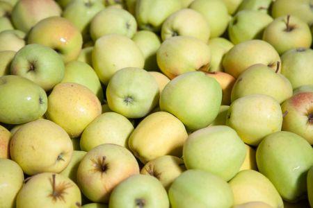 Jabłka 2017. Mniejsze zbiory dużą szansą
