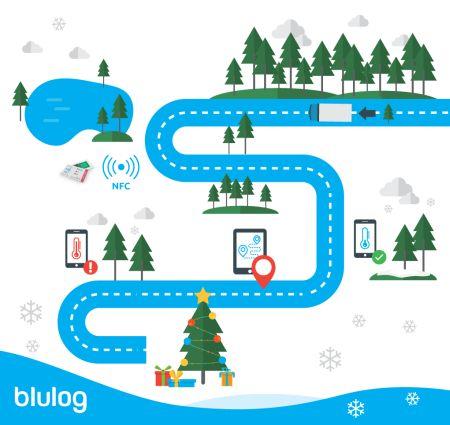 Technologia NFC w służbie bożonarodzeniowej tradycji… bo piękna choinka to świeża choinka