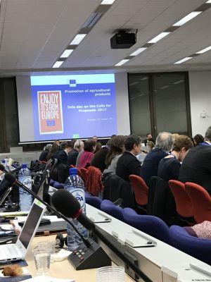 Dyrektor PIM Agnieszka Maliszewska reprezentowała branżę mleczarską na spotkaniach w Brukseli