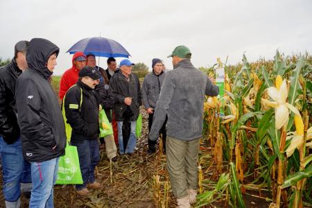 Magia kukurydzy w Kociugach
