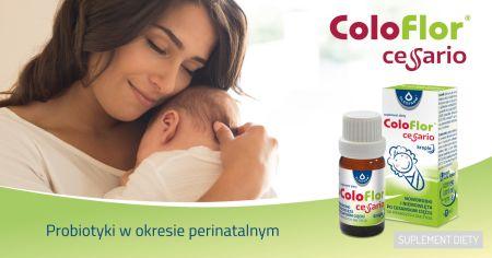 coloflor 1200x628 1