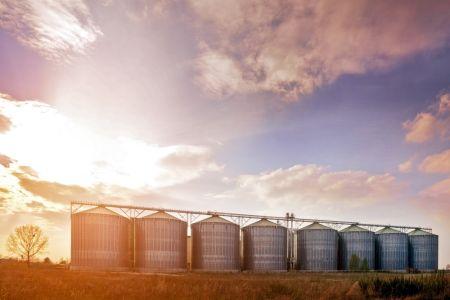 Dwa miliony ton ziarna w siedem lat!