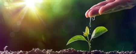 Kapitał na start dla najlepszych projektów agrotech