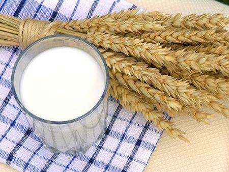 Mamy kota na punkcie mleka - Dieta możne zmniejszyć ryzyko cukrzycy