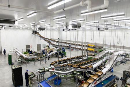 Grupa Producentów Warzyw PRIMAVEGA otwiera nowoczesny zakład produkcyjny