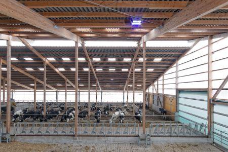 Oświetlenie specjalnie dopasowane do fizjologii krowy