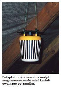 Pułapka feromonowa na motyle magazynowe może mieć kształt owalnego pojemnika