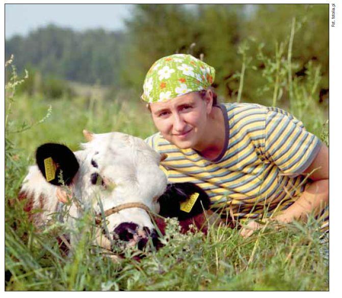 Krowa to nie maszyna do mleka