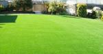 Zdjęcie 2: Roltraw - trawa rolowana. Najlepsza trawa na rynku !!!