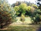 Zdjęcie 2: Podwilczyn, okolice Słupska, działka rolna, na sprzedaż, 10 ha, 315 000 zł.