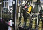 Olej rzepakowy 2,3 zl/litr + nasiona, sloma, biomasa, tluszcze roslinne od producenta.