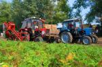 Zdjęcie 1:  Ukraina. Ziemniaki 0,25 zl/kg, kapusta 0,40 zl/kg biala, czerwona, kwaszona. Grunty rolne pod warzywa 150 zl/ha. Oferujemy na sprzedaz, wynajem opuszczony kompleks 5 budynkow po bylej krochmalnie. Sp