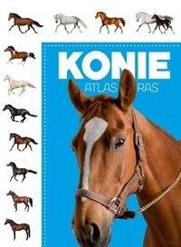 5b3c7d1159e60 Atlas ras Konie [448] 1200