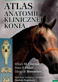 5c46e8fcc9aae Atlas anatomii klinicznej konia [390] 1200
