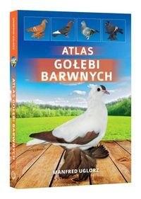 5ccfa336c2428 Atlas golebi barwnych [985] 1200