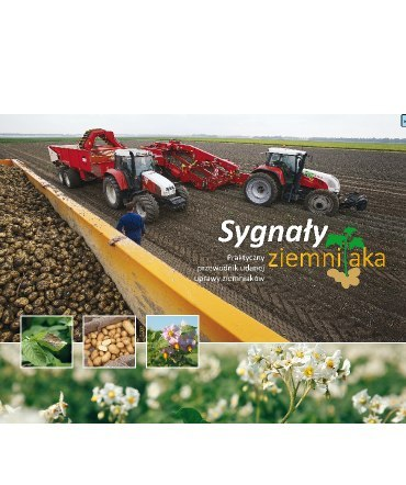 5f58534caadf8 Sygnaly ziemniaka [1445] 1200